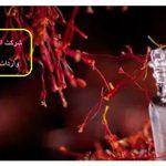 سایت فروشگاهی زعفران صادراتی