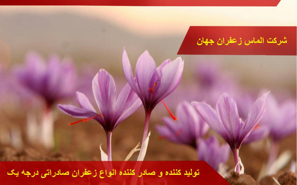 خرید و فروش زعفران و قیمت انواع زعفران در بازار