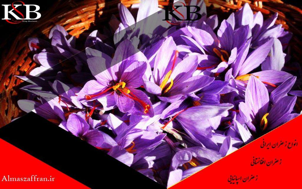 تفاوت قیمت زعفران در بهترین برندهای زعفران چیست؟