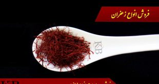 buy-saffron-for-export