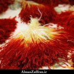 انواع زعفران و شناخت زعفران صادراتی
