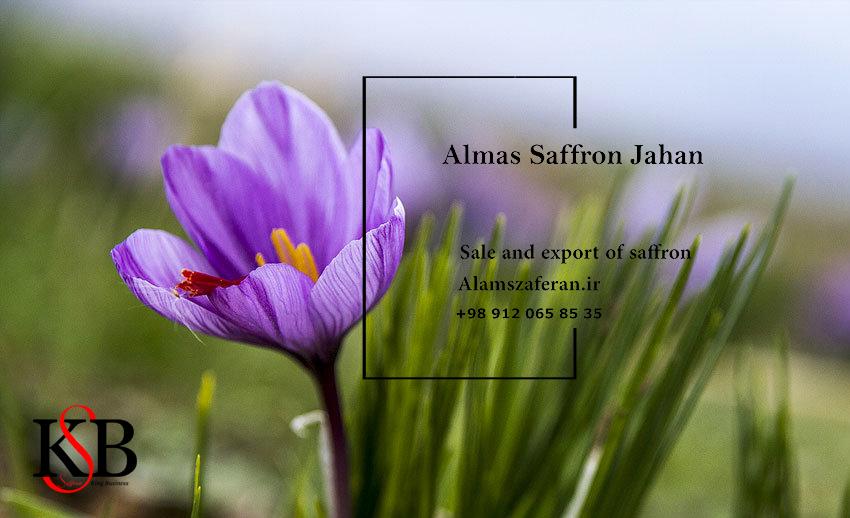 خرید زعفران قائن از کشاورز