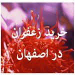 مرکز خرید زعفران در اصفهان