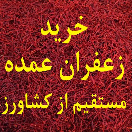 خرید زعفران عمده مستقیم از کشاورز